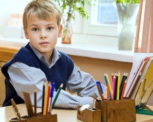young schoolboy sitting Behind a school desk