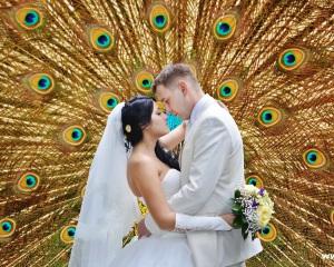 Брянск-фото-шоп-на-кургане-свадебный-фотограф-фотошоп-в-студии-377