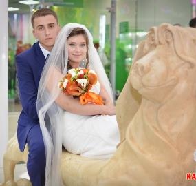 www.kadr32.ru Горбачук Сергей пофесс. фотограф на свадьбу в Брянске FuLL HD видео съёмка (69)